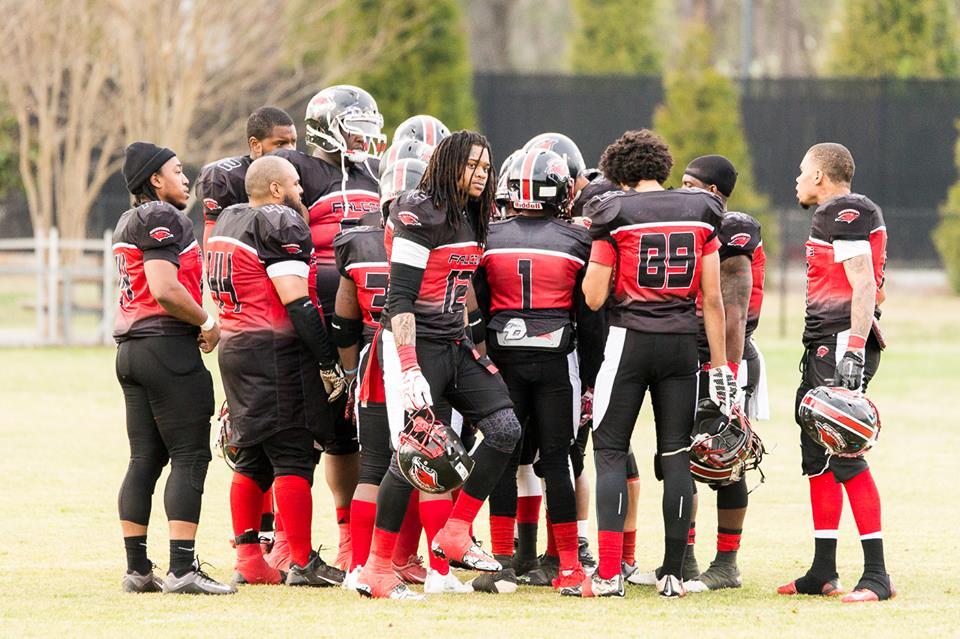 Pro football teams