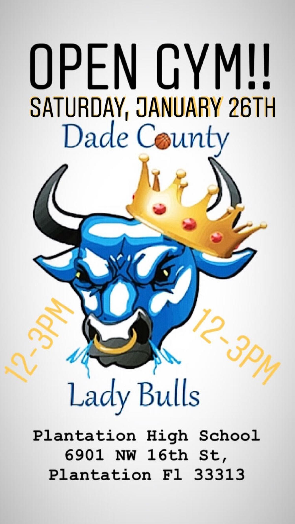 FREE OPEN GYM with the LADY BULLS 1/26/2019